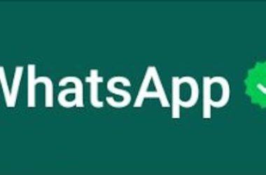 WhatsApp: spunta verde per gli account business verificati
